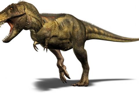 Mușcătura Tyrannousaurus Rex, cât greutatea a trei mașini